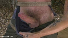 Max Cameron - Hard Woods: Max Cameron Suspended and Tormented in California Redwoods (Thumb 02)
