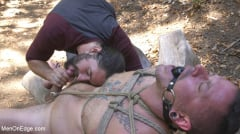 Max Cameron - Hard Woods: Max Cameron Suspended and Tormented in California Redwoods (Thumb 14)