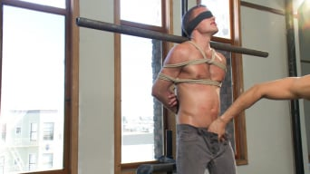 Alex Andrews in '- Straight Stud'