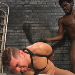 Colby Jansen in 'Kink Men' Well Hung Fuck Toys: Giant Dicks Dominate Tight Holes (Thumbnail 13)