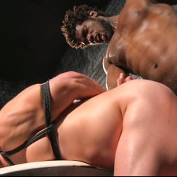 Colby Jansen in 'Kink Men' Well Hung Fuck Toys: Giant Dicks Dominate Tight Holes (Thumbnail 15)