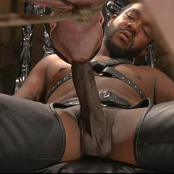 Colby Jansen in 'Kink Men' Well Hung Fuck Toys: Giant Dicks Dominate Tight Holes (Thumbnail 18)