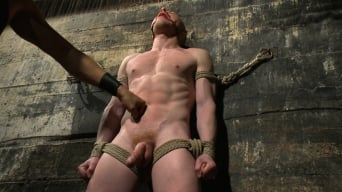 Damien Moreau in 'takes the ultimate challenge and begs for more!'