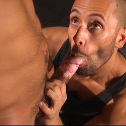 Dillon Diaz in 'Kink Men' Perpetually Rigged to the Ceiling, Suspended and Edged (Thumbnail 3)