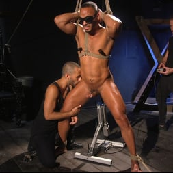 Dillon Diaz in 'Kink Men' Perpetually Rigged to the Ceiling, Suspended and Edged (Thumbnail 12)