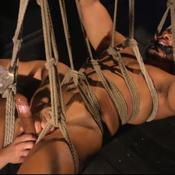 Dillon Diaz in 'Kink Men' Perpetually Rigged to the Ceiling, Suspended and Edged (Thumbnail 17)