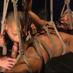 Dillon Diaz in 'Kink Men' Perpetually Rigged to the Ceiling, Suspended and Edged (Thumbnail 20)