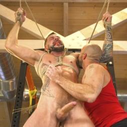 Dolf Dietrich in 'Kink Men' Cock Workout (Thumbnail 13)