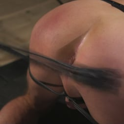 Dolf Dietrich in 'Kink Men' Muscled hunk begs for his master's abuse (Thumbnail 5)