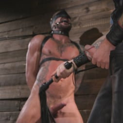 Dolf Dietrich in 'Kink Men' Muscled hunk begs for his master's abuse (Thumbnail 8)