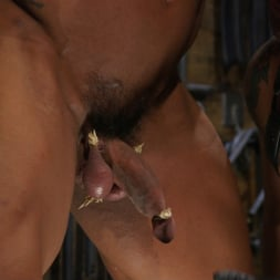 Dominic Pacifico in 'Kink Men' Bodybuilder Draven Navarro Takes Pain, Extreme CBT, and Gets Fucked (Thumbnail 8)
