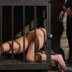 Dominic Pacifico in 'Kink Men' and Chance Summerlin: Serve and Submit (Thumbnail 6)