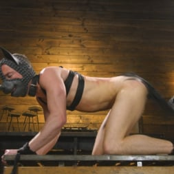 Dominic Pacifico in 'Kink Men' The Pup Master - Introducing: Master Pacifico (Thumbnail 4)