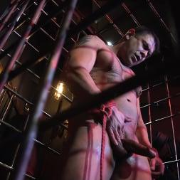 Draven Navarro in 'Kink Men' The Collector: Draven Jerks Off Under Watchful Eyes of Sperm Pervert (Thumbnail 6)