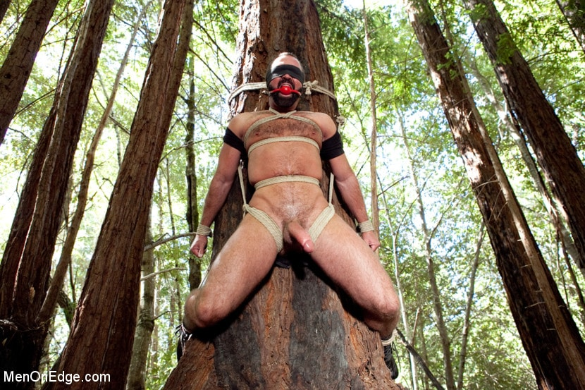 Sharon Darling Bound In The Woods And Electro Toyed By Lezdom Ma