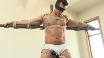 Marcus Ruhl in 'Bodybuilder Marcus Ruhl Edged for the First Time'