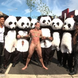 Master Avery in 'Kink Men' Naked Pandas Trick or Treat - Just in time for Halloween (Thumbnail 2)
