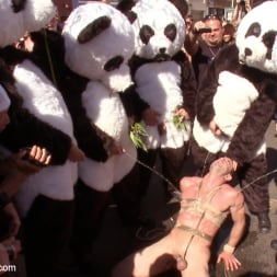 Master Avery in 'Kink Men' Naked Pandas Trick or Treat - Just in time for Halloween (Thumbnail 26)