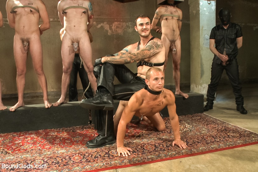 Gay male slave modification